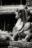 China 10MKm2 Collection - Dragon Temple Photographic Print by Philippe Hugonnard