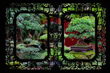 China 10MKm2 Collection - Asian Window - Bonsai Trees Photographic Print by Philippe Hugonnard