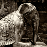 China 10MKm2 Collection - Elephant Buddha Photographic Print by Philippe Hugonnard