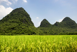China 10MKm2 Collection - Karst Moutains in Yangshuo Photographic Print by Philippe Hugonnard