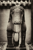 China 10MKm2 Collection - Horse Statue Photographic Print by Philippe Hugonnard