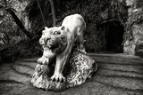 China 10MKm2 Collection - Lion - Buddhist Sculpture Photographic Print by Philippe Hugonnard