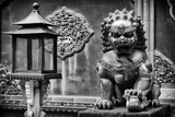 China 10MKm2 Collection - Lion Statue - Forbidden City Photographic Print by Philippe Hugonnard