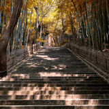 China 10MKm2 Collection - Stairs in Autumn Photographic Print by Philippe Hugonnard