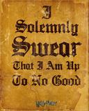 Harry Potter- I Solemnly Swear Fotografie
