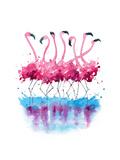 Flamingot Julisteet tekijänä  Kamenuka