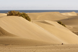 Maspalomas Sand Dunes, Gran Canaria, Canary Islands, Spain Photographic Print by Peter Thompson
