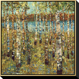 Purple Birch Framed Canvas Print by Carmen Dolce