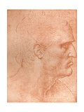 Study for the Head of St Matthew in the Last Supper, C1494-C1499 (1883) Giclee Print by  Leonardo da Vinci