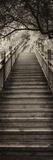 China 10MKm2 Collection - Mountain Woooden Staircase Fotografie-Druck von Philippe Hugonnard
