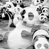 China 10MKm2 Collection - Psychedelic Pandas Photographic Print by Philippe Hugonnard