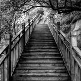 China 10MKm2 Collection - Mountain Woooden Staircase Fotodruck von Philippe Hugonnard