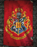 Harry Potter- Hogwarts Flag Poster