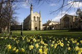 Cheltenham College, Gloucestershire Photographic Print by Peter Thompson