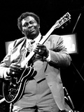 B.B. King, Capital Jazz, Knebworth, 1982 Photographic Print by Brian O'Connor