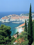 Dubrovnik, Croatia Photographic Print by Peter Thompson