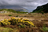 Loch Maree, Highland, Scotland Photographic Print by Peter Thompson
