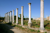 Roman Columns, Salamis, North Cyprus Photographic Print by Peter Thompson