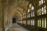 Cloisters, Gloucester Cathedral, Gloucestershire Photographic Print by Peter Thompson