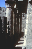 Lotus Capitals, Temple of Horus, Edfu, Egypt, Ptolemaic Period, C251 Bc-C246 Bc Photographic Print by CM Dixon