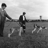 Hound Trailing, One of Cumbrias Oldest and Most Popular Sports, Keswick, 2nd July 1962 Photographic Print by Michael Walters