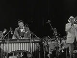 The Lionel Hampton Orchestra on Stage at Knebworth, Hertfordshire, July 1982 Reproduction photographique par Denis Williams