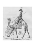 French Domedary Regiment. Captured with a Convoy in the Lybian Desert, May, 1801 Giclee Print