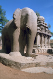 Carved Stone Elephant, Five Rathas, Mahabalipuram, Tamil Nadu, India Photographic Print by Vivienne Sharp