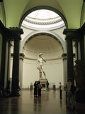 Statue of David, Accademia Gallery, Florence, Italy Photographic Print by Peter Thompson