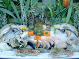 Fish Restaurant Display, Rethymnon, Crete, Greece Photographic Print by Peter Thompson