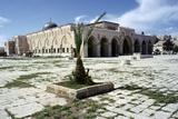 Al Aqsa Mosque, Jerusalem, Israel Photographic Print by Vivienne Sharp