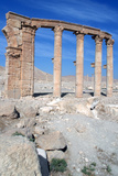 The Oval Piazza, Palmyra, Syria Photographic Print by Vivienne Sharp