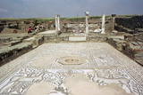 Mosaic, Ruins of the Roman Town of Stobi, Gradsko, Macedonia Photographic Print by Vivienne Sharp