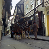 Tetley Shire Horses in the Shambles, York, North Yorkshire, 1969 Photographic Print by Michael Walters