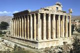 Temple of Bacchus, Baalbek, Lebanon Reprodukcja zdjęcia autor Vivienne Sharp