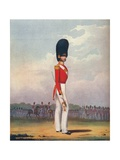 Officer, Grenadier Guards, 19th Century (1909) Giclee Print by Ralph Nevill
