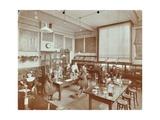 Science Class, Aristotle Road Girls School, Clapham, London, 1908 Photographic Print