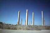 Ruins of the Apadana, Persepolis, Iran Photographic Print by Vivienne Sharp