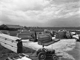 A Busy Timber Yard, Bolton Upon Dearne, South Yorkshire, 1960 Photographic Print by Michael Walters