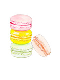 Macarons 4 Art by  Alison B Illustrations