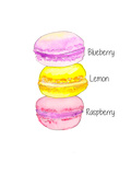 Macarons Txt Prints by  Alison B Illustrations