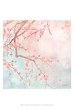 Sweet Cherry Blossoms IV Poster by Evelia Designs