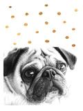 Ikonolexi - Dog 3 Obrazy