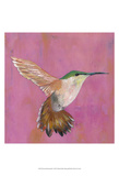 Sweet Hummingbird I Prints by Mehmet Altug