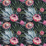 Raster Tropical Protea Pattern Posters by  Zenina