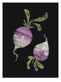 Turnips Black Art by  The Glass Mountain