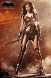 Batman vs. Superman- Wonder Woman Prints