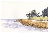 Solitary Coastline III Prints by Dianne Miller