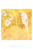 Budgie & Cartouche I Prints by Evelia Designs