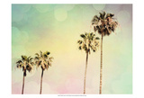 Palm Trees II Prints by Sylvia Coomes